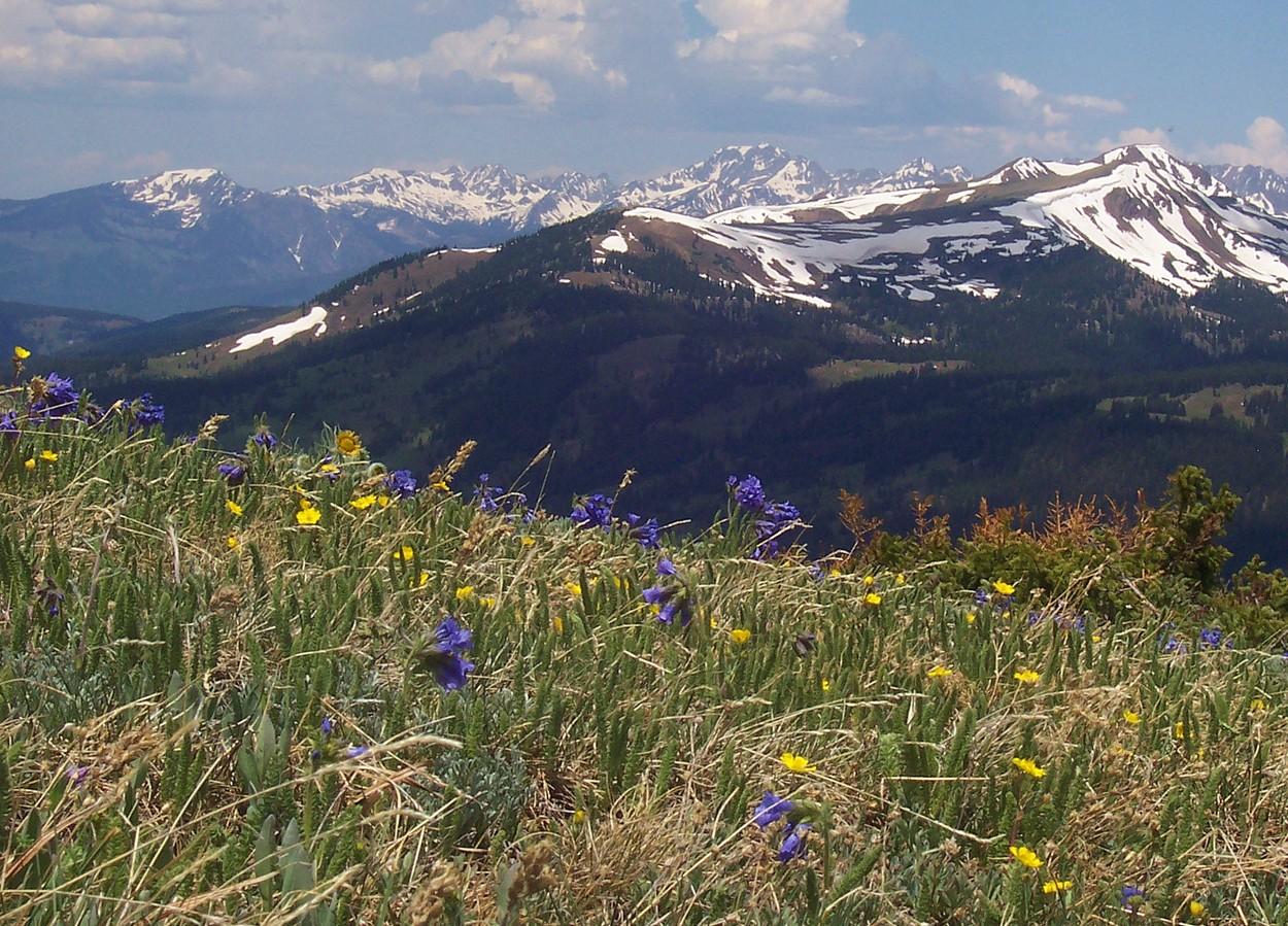Copper Mountain in summer